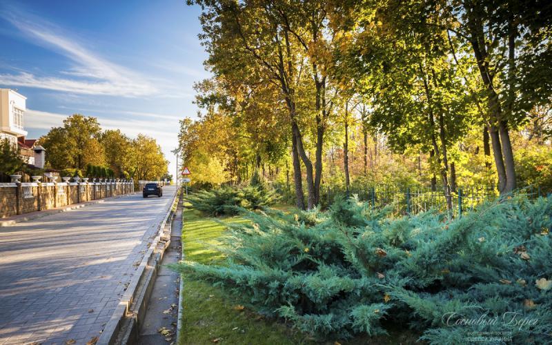 Sosnoviy Bereg - autumn 02.jpg