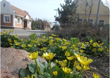 Spring on the community streets