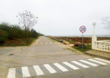 Організація дорожнього руху