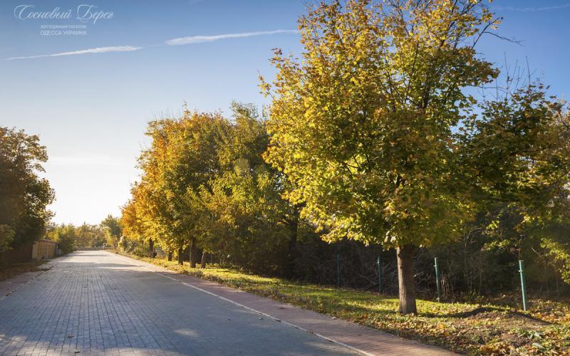 Sosnoviy Bereg - autumn 17.jpg